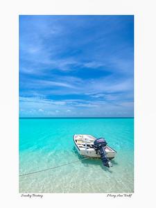 Sea Fan, Exuma Cays