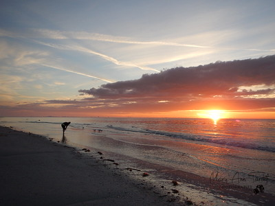 Sanibel Island Sunrise