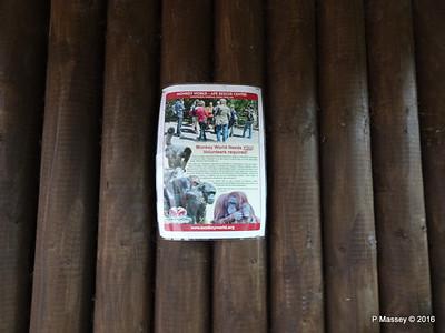 Monkey World 28-02-2016 10-34-44