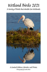 Wetland Birds 2021 Limited Edition Calendar and Prints