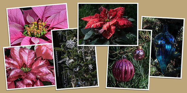Holiday Poinsettias and Ornaments Note Cards - Set C