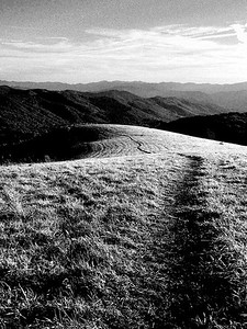 The Max Patch Journey