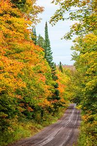 10761 - Fall Colors - road