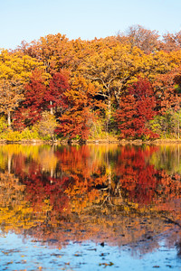 10734 - Fall Colors - Silverwood Park - St. Anthony, MN