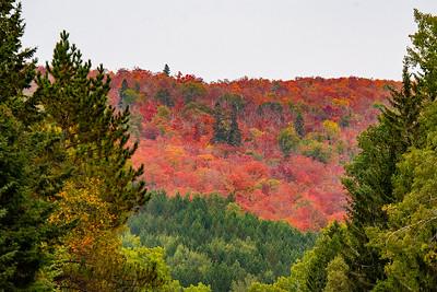 10833 - Fall Colors - Sawbill Trail