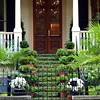 "Doors of Savannah by Lora Mosier<br /> <br />  <a href=""http://www.burningriverboutique.com"">http://www.burningriverboutique.com</a>"