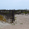 "Dunes of Tybee by Lora Mosier<br /> <br />  <a href=""http://www.burningriverboutique.com"">http://www.burningriverboutique.com</a>"