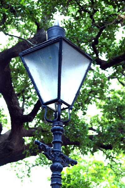 """Hey there, Lamp Post -- Whatcha Knowin'? by Lora Mosier<br /> <br />  <a href=""""http://www.burningriverboutique.com"""">http://www.burningriverboutique.com</a>"""