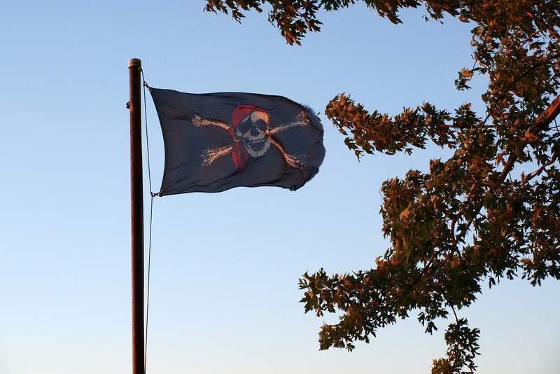 "Jolly Roger Glows by Lora Mosier<br /> <br />  <a href=""http://www.burningriverboutique.com"">http://www.burningriverboutique.com</a>"