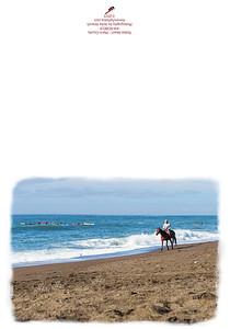 KW-ROBE14 Rodeo Beach Horse