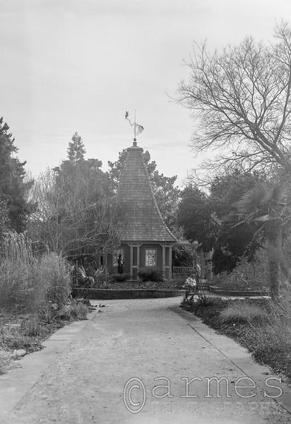 The Necessary, JC Raulston Arboretum, Raleigh, North Carolina