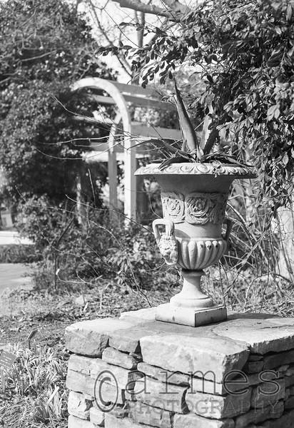 Klein-Pringle White Garden, JC Raulston Arboretum, Raleigh, North Carolina