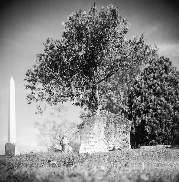 Oakwood Cemetery, Raleigh, North Carolina