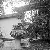 Japanese Garden, JC Raulston Arboretum, Raleigh, North Carolina