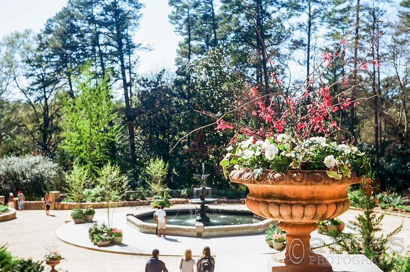 Sarah P. Duke Gardens, Durham, North Carolina