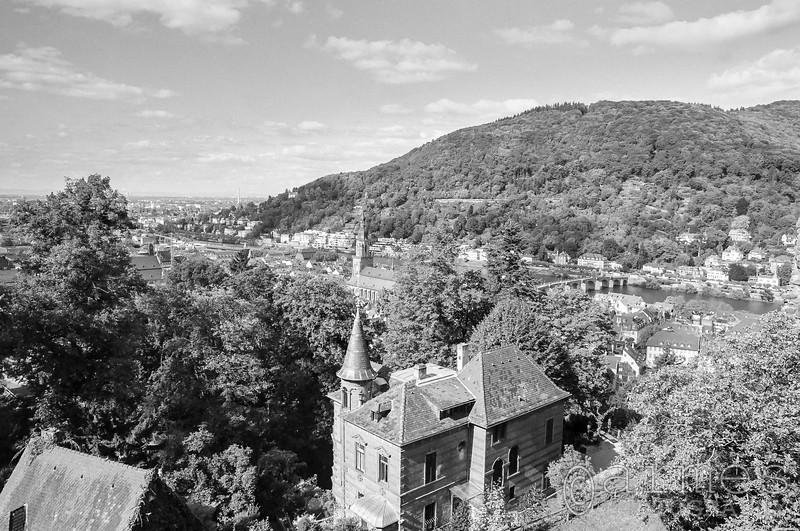 Altstadt and Neckar River from the Heidelberger Schloss, Heidelberg, Germany