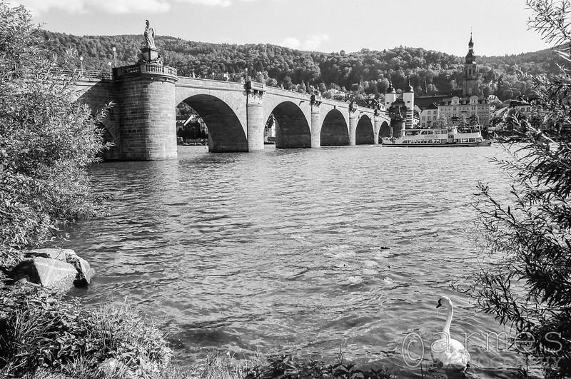 Old Bridge and the Neckar River, Heidelberg, Germany
