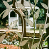 Klein Pringle White Garden, JC Raulston Arboretum, Raleigh, North Carolina