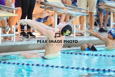 Swim v CS-8414