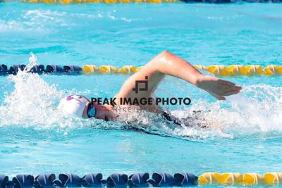 Swim v CS-8595