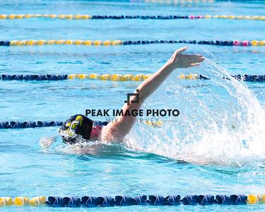 Swim v CS-8438