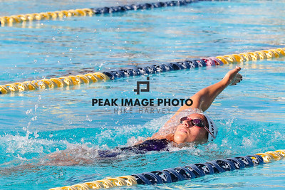 Swim v CS-8798