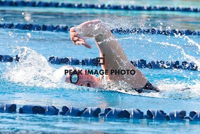 Swim v CS-8620