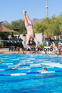 Diving-_MG_0108