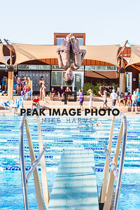 Diving-_MG_0542