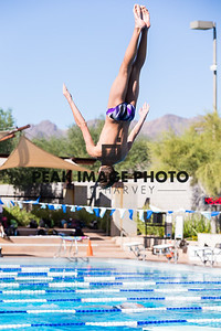 Diving-_MG_0220