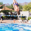 Diving-_MG_0222