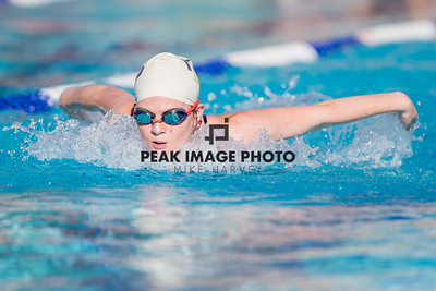 Swim-_23I4082