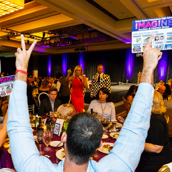 NDP Auction2018-IMG_0862