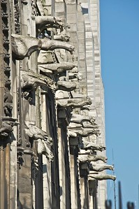 """In medieval French gargouille was their word for throat. Perhaps we could call these, collectively,  a """"Gush of Gargoyles""""?"""