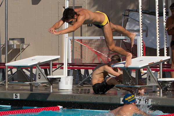 ND Swimming Crespi-Louisville 2012