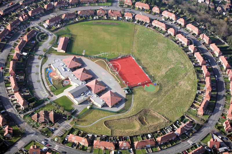 Rosslyn Park School from the air.