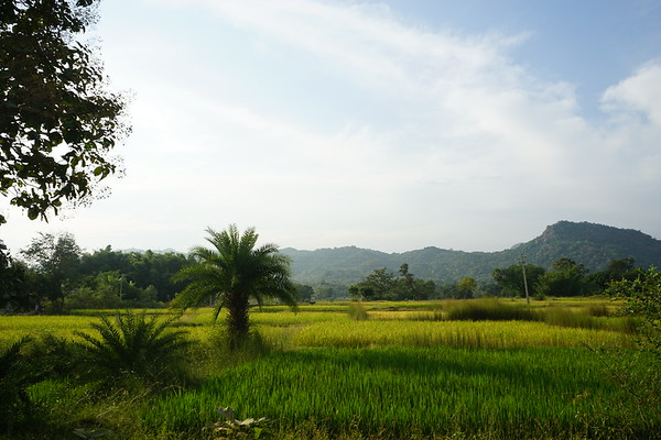 Nov 2016 - Bangriposi (Orissa)
