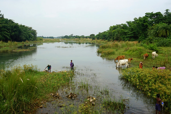 Nov 2016 - Buribalam River (Orissa)