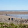 BAY OF FUNDY JWWL6174