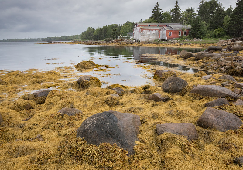 Margaret's Harbor scene along LightHouse Trail in Nova Scotia