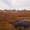 Morning at Peggy's Cove