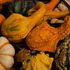 Fall harvest, NS