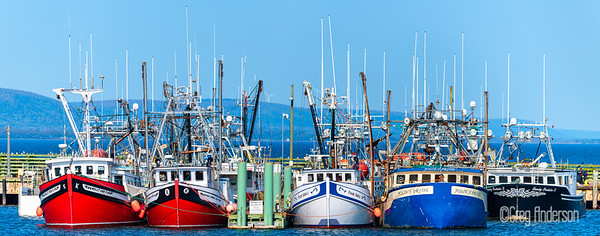 Digby harbor boats