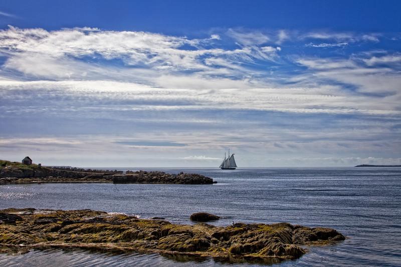 Bluenose II Heads To Open Sea