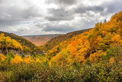 Road in the Highlands National Park, Cape Breton