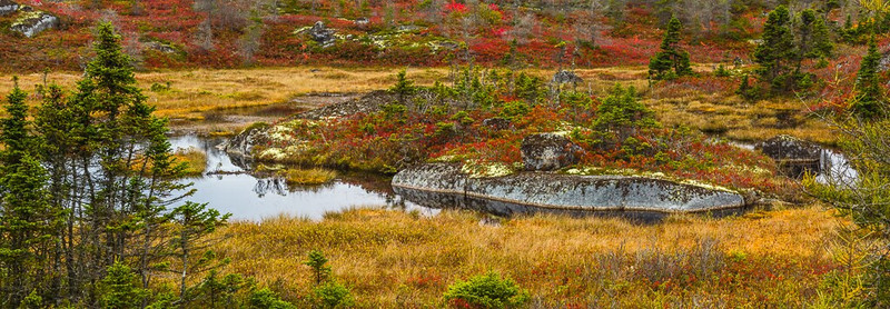 Tundra at Peggy's Cove Preservation Area - Panoramic Image - Nova Scotia, Canada - Cosmas Liu - October 2012