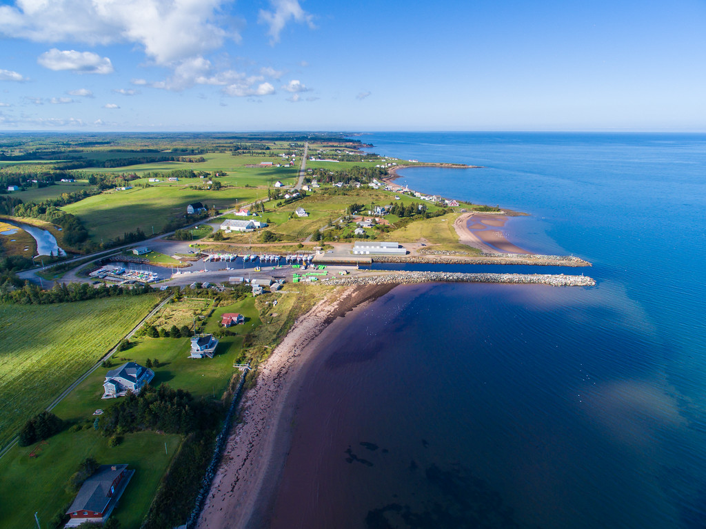 Toney River Shoreline