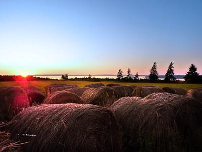 Hay Bales, sunset near Scots Bay