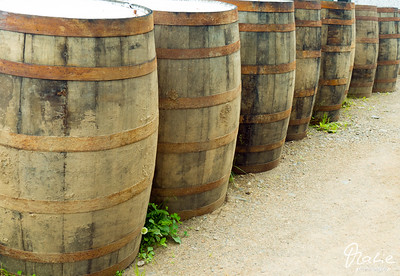 barrells outside the  Glenora Whisky Distillery