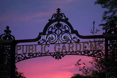Public Gardens Sunset, Halifax, NS